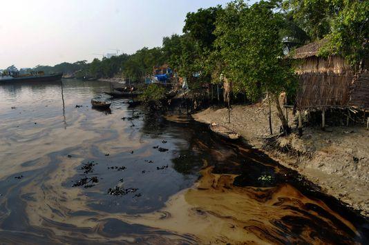 Désastreuse marée noire au sud de l'Inde
