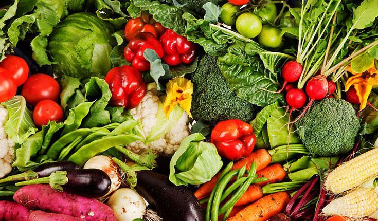 Agriculture bio: L'Europe veut autoriser les pesticides