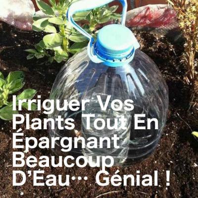 Astuce jardin planter2