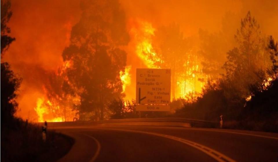 Un gigantesque feu de forêt au Portugal a fait au moins 62 morts et 54 blessés