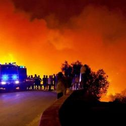 Le feu s'est déclaré samedi peu avant 15h (heures locales) dans la commune de Pedrogao Grande.