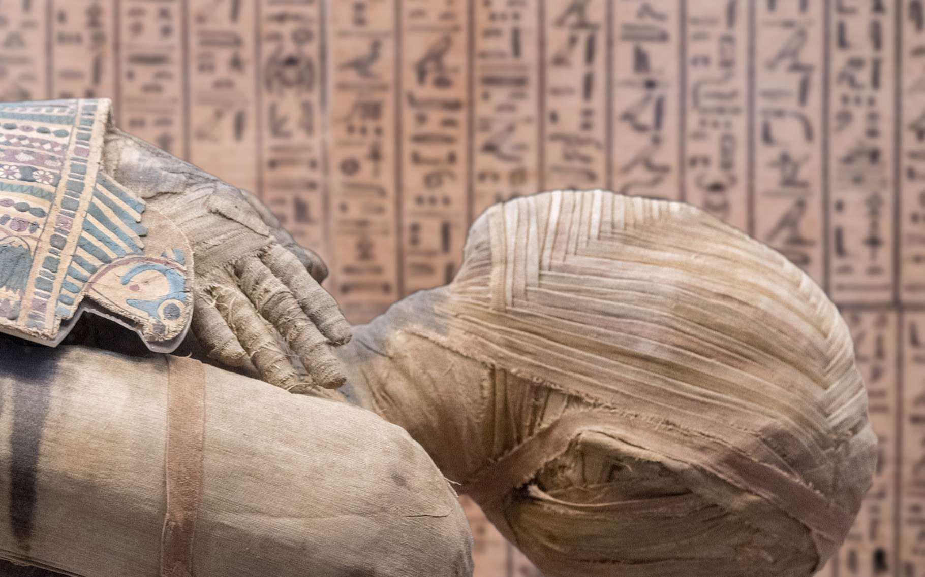 L'ADN de momies égyptiennes enfin analysé