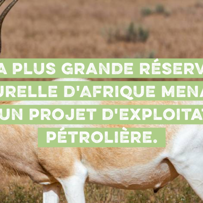 Reserve naturel menace e