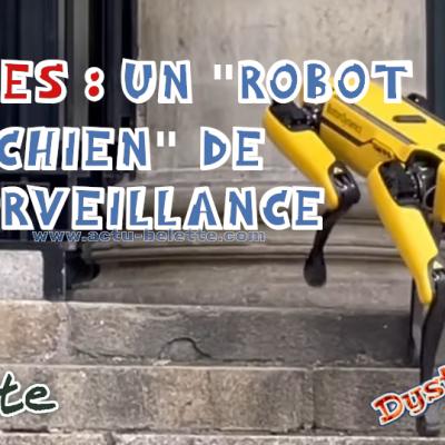 Robotvillenantes