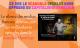 Ce que Le scandale OpenLux nous apprend du capitalisme français
