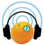 webradio2.jpg